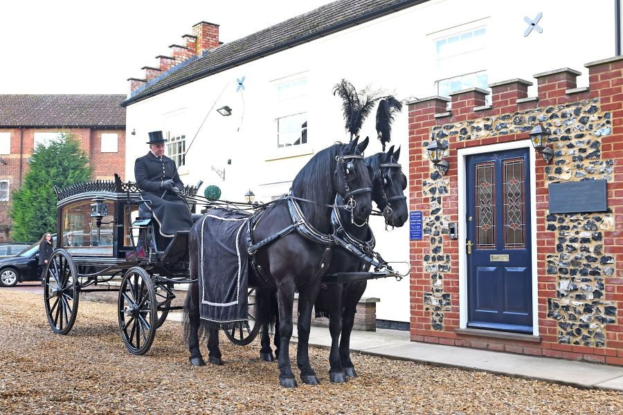 Victorian Horse drawn hearse, drawn by team of 2 Belgian Black Horses